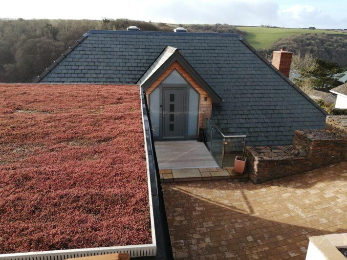 Sedum Roof