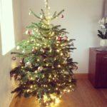 Scandia Hus Christmas